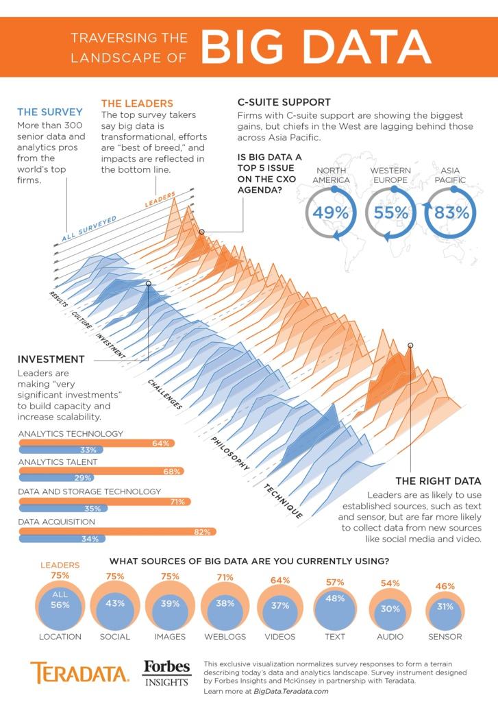 Big data survey