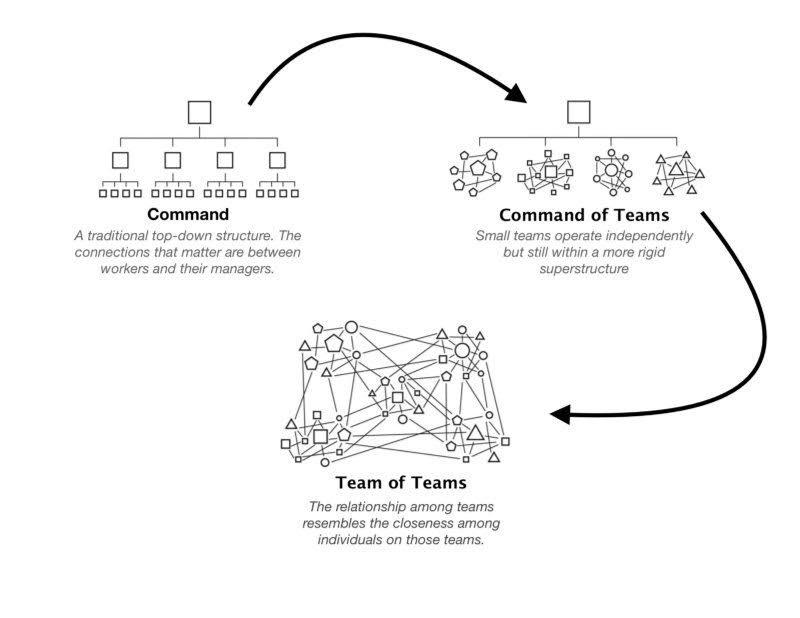 Holacracy organisation model